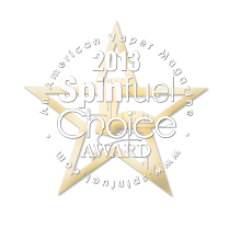 Spinfuel Choise Award 2013